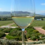 Wines & views in the Cape Winelands