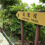 Lantau Trail