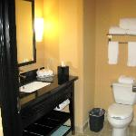 Holiday Inn Express Hotel & Suites Dallas-Medical Center Foto