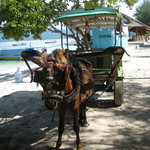  il  &quot;taxi&quot; di gili air