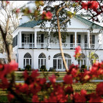Lowndes Grove Plantation Bed and Breakfast Inn
