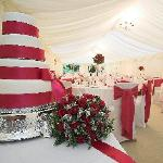 cake & marquee