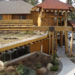 The Cedar House Sport Hotel Truckee