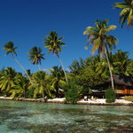 Beach Bungalows & coral garden