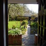  view from door into small garden