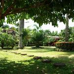 Foto di Palm Garden Lodge