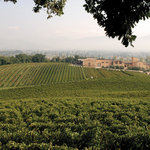 Arnaldo Caprai Winery