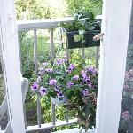 Foto de Garden View Bed and Breakfast