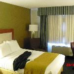 Foto de Holiday Inn Express Exton - Lionville