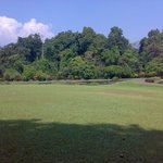 Bogor Botanical Gardens