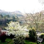 Another view from our bedroom showing part of the cottage's garden and Loughrigg Fell