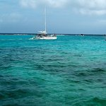 Sailing to Sting Ray City