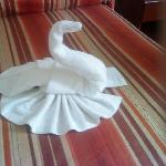 A swan made by shiela