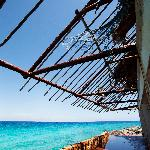 Foto de Beachouse Dive Hostel Cozumel