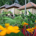 Ijen Resto & Guest House