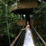 wedding at the treehouse