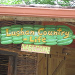 Lushan Country Life Tours