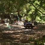 Foto de Wheeler Gorge Campground