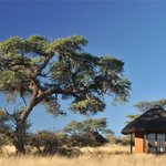 Camelthorn Kalahari Lodge