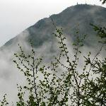 mists of Semmering (magical place)