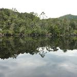 REFLECTION ON THE GORDON RIVER
