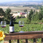 Yamhill Vineyards Bed & Breakfastの写真