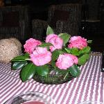 Camelias as table decoration