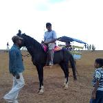  horse ridding