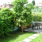  Parte del giardino del B&amp;B