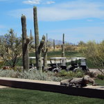 Ritz-Carlton Dove Mountain - Cayton's