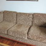 1970s couch - who knows what's crawling in it?