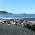  La Push