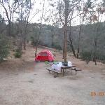  Hungry Gulch Campsite