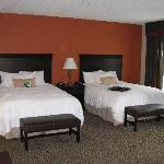 Φωτογραφία: Hampton Inn Spring Lake-Ft. Bragg