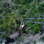 Catalina Zip Line Eco Tour