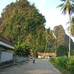road leading to homestay