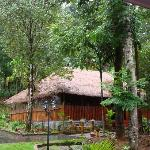 Foto de Blue Ginger Wayanad Resorts