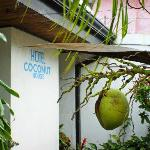 Hotel Coconut House Foto