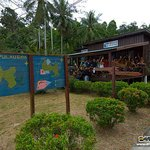 Downbelow PADI 5 Star IDC Dive & Adventure Centre Gaya Island TARP