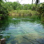 Cenote Crystal