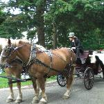 Harriet Beecher Stowe annual Garden Party, celebrating her birthday.  Visitors take a horse and