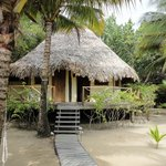 Foto de Kanantik Reef & Jungle Resort