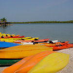 Naples Kayak Company
