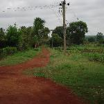 Entry into the farm lands