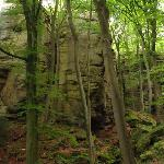 Photo de Mullerthal Trail