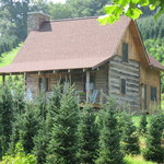 Clinch Valley Cabin at Boyd Mountain