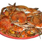 All You can eat crabs everyday !  Yum