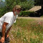  Bill (Yosemite Sam) showed us the wildflowers across the road before we left for the Tioga Pass.