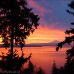  Take in the breathtaking views of Mt. Rainer and Puget Sound!