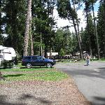 Park at the River RV Park - Joseph